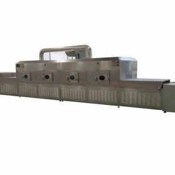 Low Temperature Tray Vacuum Microwave Fruit Vegetable Drying Dryer Machine